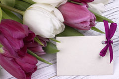 Purple and white tulips with white paper on a white wooden background with card for text. Womans Day. 8 March. Mother`s Day. Royalty Free Stock Photo