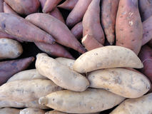 Purple and White Yams for sale Royalty Free Stock Photography