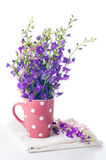 Purple wild flowers Royalty Free Stock Photography