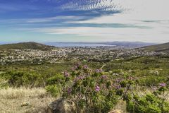 Landscape view of Cape Town stock image