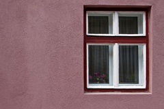Purple window frame on pink wall. With purple flowers at the windows Stock Photos