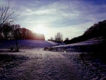 Purple winter. Sun stock image