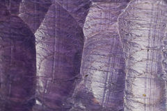 Purple Wood Texture Stock Images