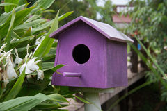 Purple Wooden bird houses beside the river Stock Image