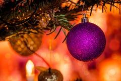 Purple Xmas bauble on a Christmas tree Stock Photos