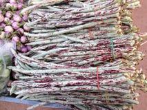 Purple yard long bean Royalty Free Stock Photo