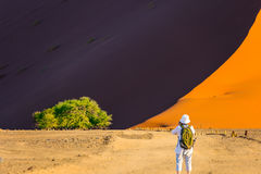 Woman is taking pictures of a landscape. Purple and yellow dunes of the Namib desert. Elderly enthusiastic woman with a green backpack is taking pictures of a Royalty Free Stock Photos