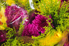 Purple and Yellow flower in the shop Royalty Free Stock Photo