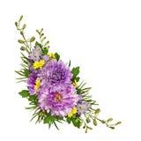 Purple and yellow flowers corner arrangement Royalty Free Stock Photography