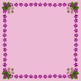 PurpleBlossomsFrameSquarePink2 Royalty-vrije Stock Afbeeldingen