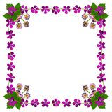 PurpleBlossomsFrameSquareWhite1 Royalty-vrije Stock Afbeeldingen