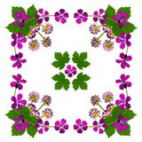 PurpleBlossomsNapkinWhite2 Royalty-vrije Stock Afbeelding