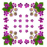 PurpleBlossomsNapkinWhite1 Royalty Free Stock Photos