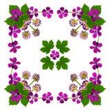 PurpleBlossomsNapkinWhite2 Royalty Free Stock Image