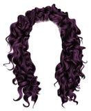 Purplecolors longos dos cabelos encaracolado Estilo da forma da beleza wig Fotografia de Stock Royalty Free