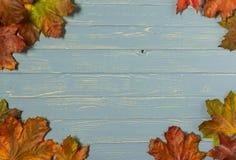 Purplehearttabelle mit Herbstlaub Lizenzfreie Stockfotografie