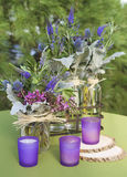 Purples i zielenie Obraz Royalty Free