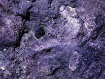 Texture of Purpurite. The purples, and the light reflecting off of the flecks of crystals embedded, caught my eye with this sample.  Purpurite is a mineral Stock Image