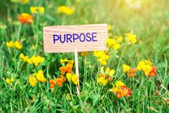 Purpose signboard. Purpose on small wooden signboard in the green grass with flowers and sun ray stock photography