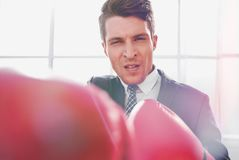 Purposeful young businessman in Boxing gloves. Concept of competitiveness stock photography