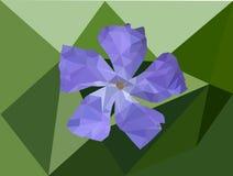 Purppe blomma Arkivbild