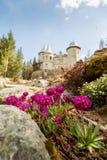 Purpur blüht ein Savoia-Schloss in Gressoney Stockbilder