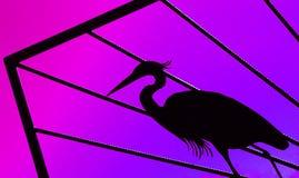 Purpur fågel arkivfoton