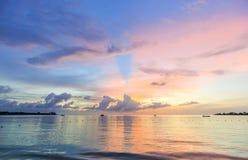 Purpur i menchii denny zmierzch na plaży, Karaiby Obraz Stock