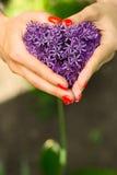 Purpur kwiatu serce Zdjęcia Royalty Free