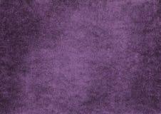 purpur sammet Royaltyfri Fotografi