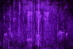 purpur sammet Royaltyfria Bilder