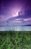 purpur sjösidasoluppgång Royaltyfri Bild