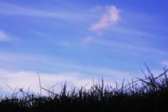 purpur sky Royaltyfri Fotografi