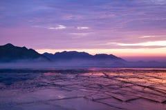 purpur soluppgång Arkivbilder