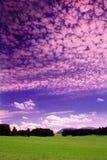 purpur sommarskymning Fotografering för Bildbyråer
