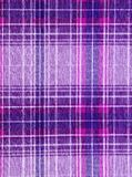 purpur tartan Royaltyfria Bilder