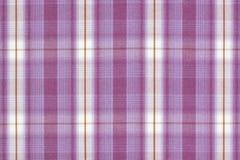 purpur tartan Arkivbild