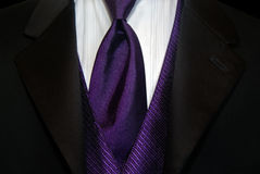 purpur tie royaltyfria foton
