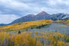 purpura berg Fotografering för Bildbyråer