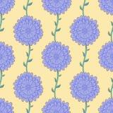 Purpura blommor Arkivbilder