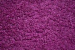 Purpura carpeted zbliżenie Obraz Stock