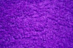 Purpura carpeted zbliżenie Obrazy Stock