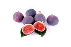 Purpura figs över leaves på white Fotografering för Bildbyråer