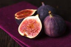 Purpura figs Arkivfoton