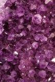purpura gems fotografering för bildbyråer