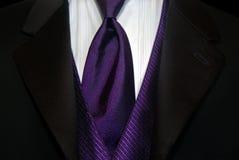 purpura krawat Zdjęcia Royalty Free