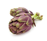 purpura kronärtskockor Royaltyfri Foto