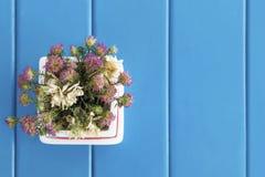 Purpura kwiat na błękitnym drewno stole kosmos kopii zdjęcie royalty free