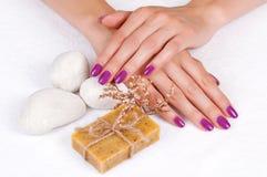 Purpura manicure i ziołowy mydło Zdjęcie Royalty Free
