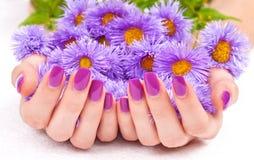 Purpura manicure och blommor Royaltyfria Bilder